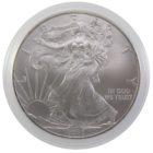 1 доллар 2010 г. «Шагающая свобода»