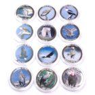 Малави. Набор монет 10 квач 2010 г. «Хищные Птицы» (12 шт.)