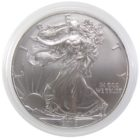 1 доллар 2013 г. «Шагающая свобода»